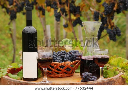 vineyard with red wine bottle and glass - stock photo