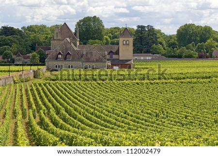 Vineyard, with Village in Bourgogne, Burgundy. France. - stock photo
