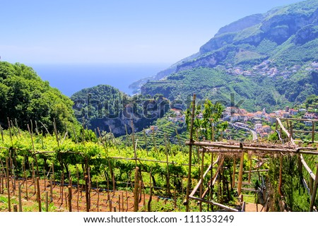 Vineyards among the hills along the Amalfi Coast, at Ravello, Italy - stock photo
