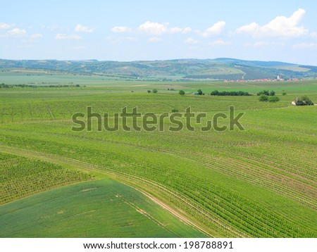 Vineyards and fields in South Moravia, Czech republic.  - stock photo