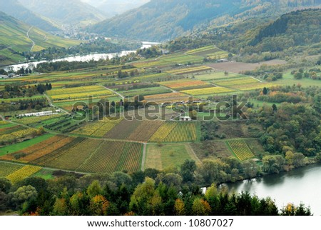 vineyards and forest along the mosel river in germany - stock photo