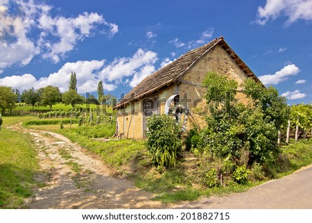 Vineyards and mud made cottage in Prigorje region, Croatia - stock photo