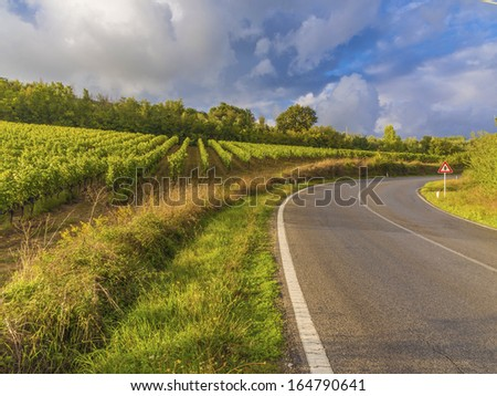 vineyards in a Tuscan road bend  - stock photo