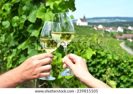 Vineyards in Rhine region, Switzerland - stock photo