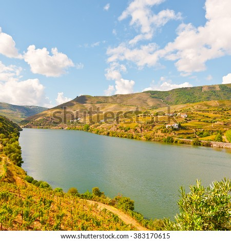 Vineyards in the Valley of the River Douro, Portugal - stock photo