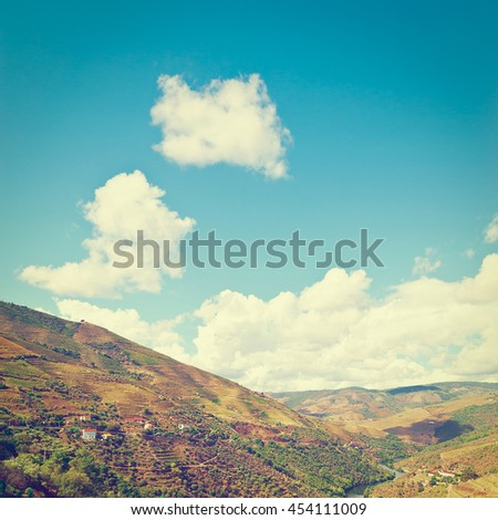 Vineyards in the Valley of the River Douro, Portugal, Retro Effect - stock photo