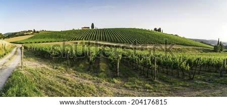 Vineyards in Tuscany. Farm house.Panoramic view - stock photo
