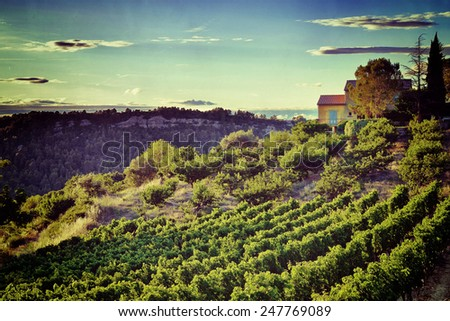 Vineyards in Vaucluse, Provence, France. Filtered image, vintage effect applied  - stock photo