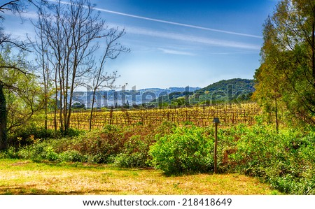 Vineyards line the rolling hills of California's Wine Country. Sonoma County, California. - stock photo