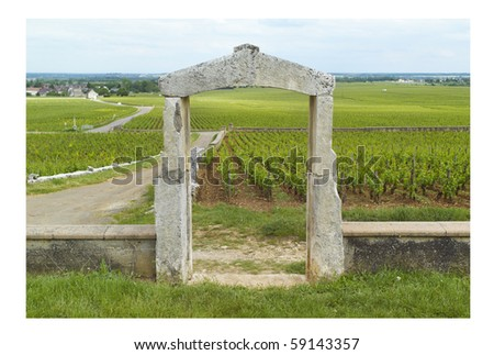 Vineyards of Chassagne Montrachet, Bourgogne - stock photo