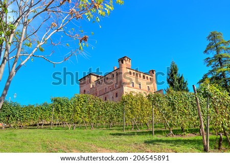 Vineyards of Grinzane Cavour among on the downhill under clear blue sky in Piedmont, Northern Italy. - stock photo