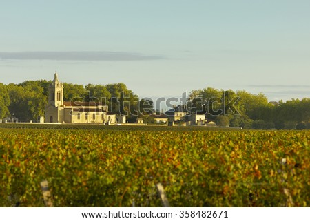 Vineyards of Margaux - stock photo