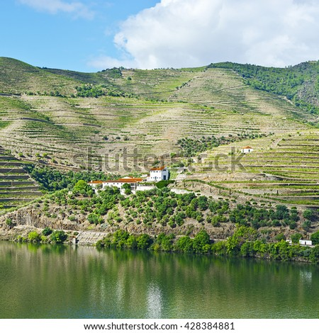 Vineyards on the Banks of the River Douro in Portugal - stock photo