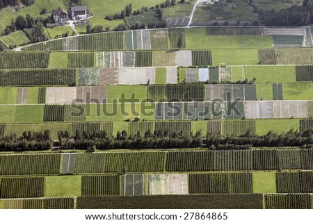 Vineyards valley in northern Italy - stock photo