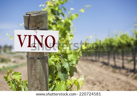 Vino Sign On Post at the End of a Vineyard Row of Grapes. - stock photo