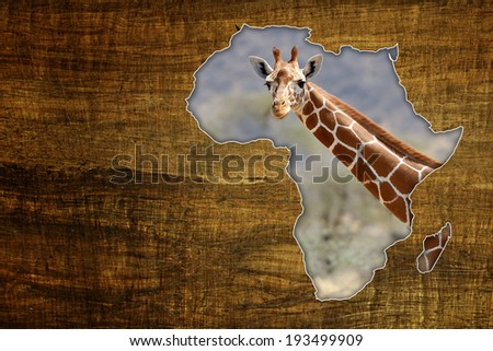 Vintage Africa Wildlife Map Design on papyrus with giraffe - stock photo