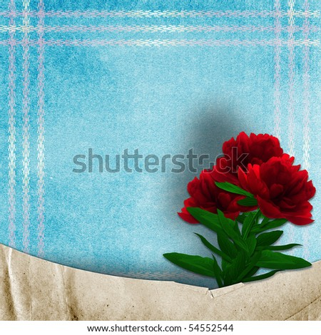 Vintage background for invitation or photo. - stock photo