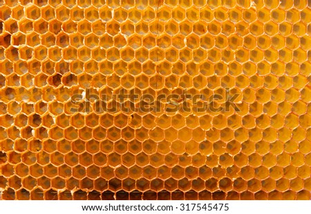 Vintage background from a honeycomb.