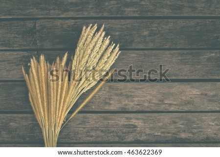 Vintage background of dry flower on wooden floor