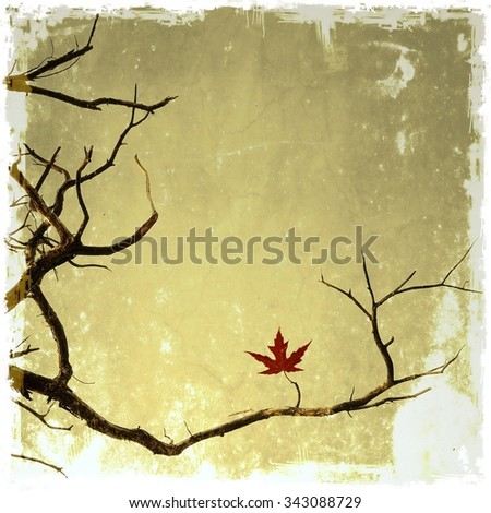 Vintage bare branches with small leaf of maple - stock photo