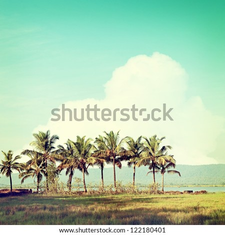 Vintage Beach Palms - stock photo