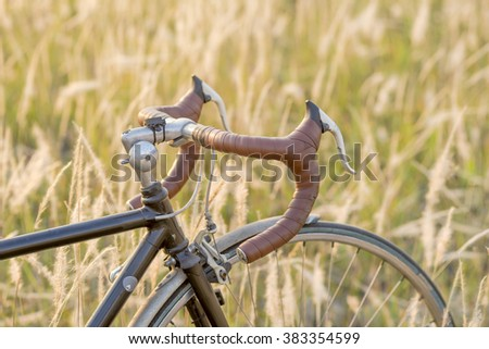 Vintage Bicycle standing in Imperata cylindrica Beauv field at sunset