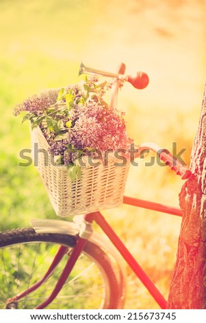 Vintage bicycle waiting near tree - stock photo