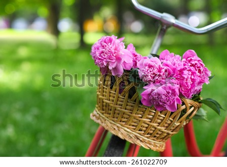 Vintage bicycle with basket with peony flowers in the spring park - stock photo