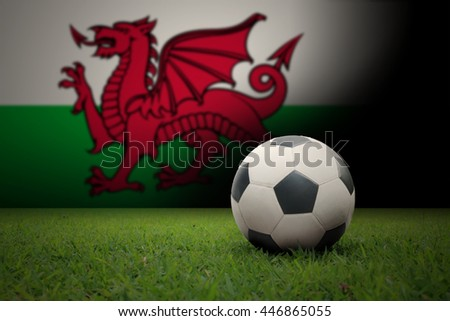 vintage black and white football ball on green grass has the national flag of wales background