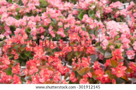 Vintage blur red flowers - stock photo