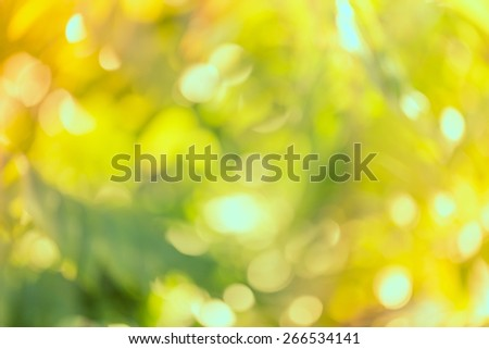 Vintage bokeh of nature background