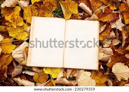 Vintage book with blank pages as copy space on fallen autumn leaves background, top view. - stock photo
