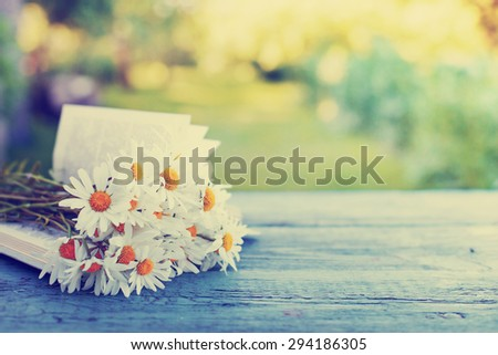 Vintage book with bouquet of daisy flowers against nature background/ summer garden background - stock photo