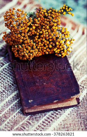 Vintage books with bouquet of flowers/ nostalgic vintage background.Flowers on the book. Old books with romantic yellow flowers on dark background and copy space, vintage editing.  - stock photo