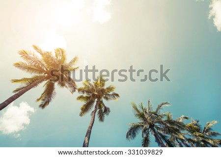 Vintage coconut palm tree on beach blue sky with sunlight of morning in summer, instagram filter - stock photo