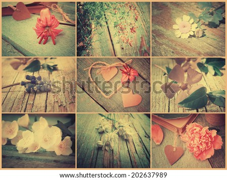 Vintage collage of various flowers. Floral background. Retro style. - stock photo