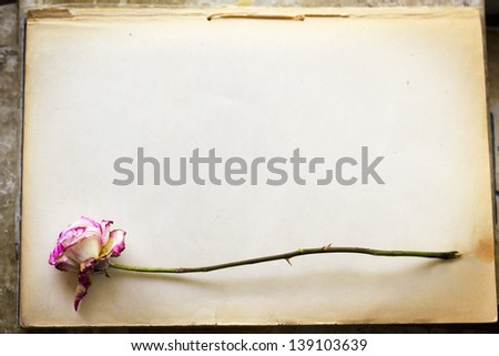 Vintage. Dead rose on old paper background - stock photo