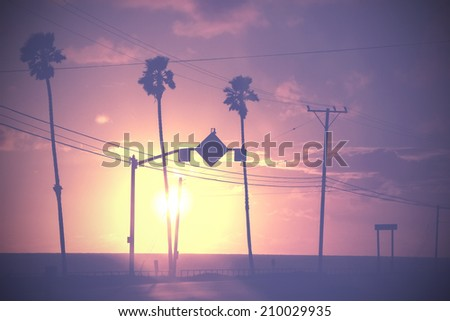 Vintage dimmed sunset picture of palms and poles on street against sun. - stock photo