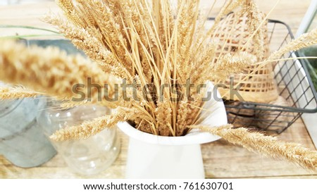 Vintage dry flowers in white vase on wooden table.