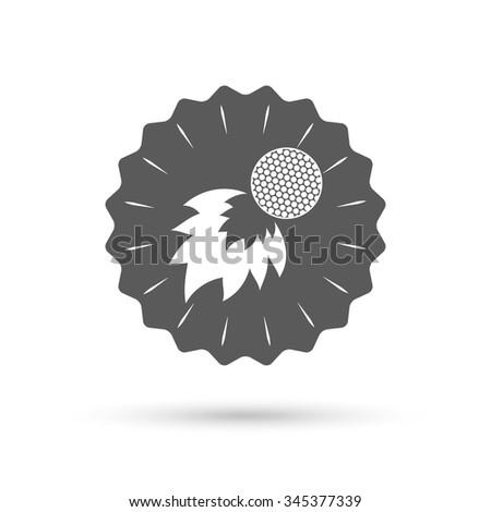 Vintage emblem medal. Golf fireball sign icon. Sport symbol. Classic flat icon.  - stock photo