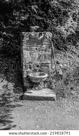 Vintage emotion. Ancient drinking fountain in the wood close to Pisa. Tuscany