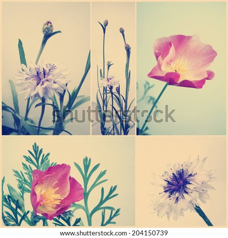 Vintage floral collage. Retro flowers with paper texture overlay. - stock photo