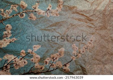 Vintage grungy retro background with sakura - stock photo