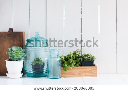 Vintage home decor: houseplants, green succulents, old wooden boxes and vintage blue glass bottles on white wooden board, cozy home interior. - stock photo