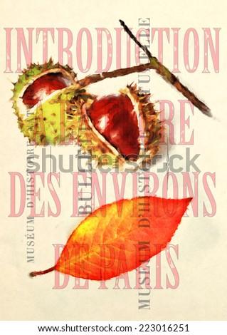 vintage illustation - stock photo