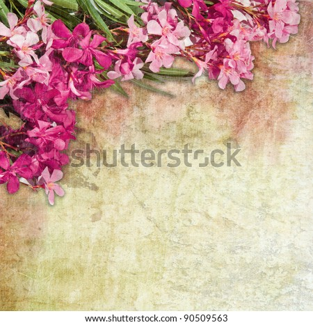 vintage illustration of oleander flowers frame distressed treatment for a retro feel combination of