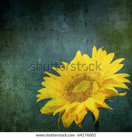 vintage image of sunflower on grunge background - stock photo