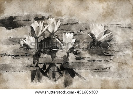 Vintage image of White waterlily flowers with leaves in brown color.