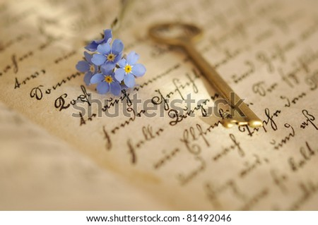 Vintage key and forget-me-nots on an old diary - stock photo