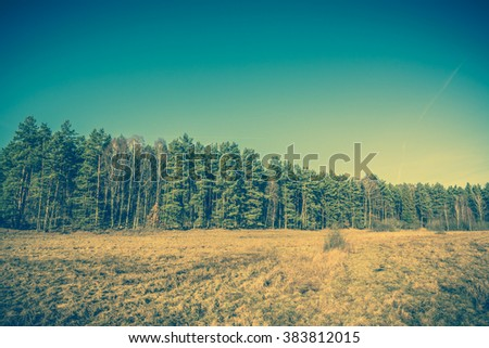 Vintage landscape of rural field and forest. - stock photo
